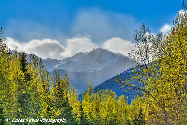 The Chugach Mountains from Campbell Creek Science Center in Anchorage<br /> May 20, 2011<br /> HDR