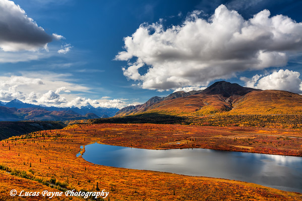 Fall colors along Knob Lake from Alascom Road near Sheep Mountain<br /> HDR<br /> September 08, 2011