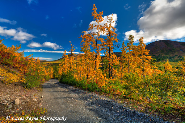 Fall colors and the Peters Hills along the Petersville Road<br /> HDR<br /> September 01, 2011