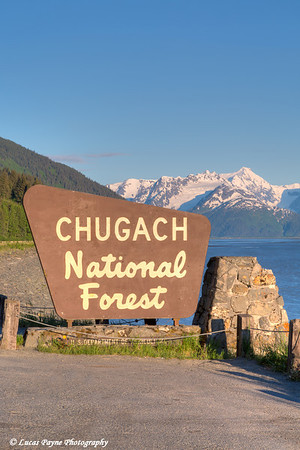 Chugach National Forest sign along Turnagain Arm and the Seward Highway, Southcentral Alaska.<br /> <br /> June 05, 2014