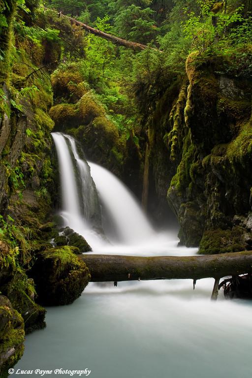 Virgin Creek Falls near Girdwood, Alaska<br /> August 15, 2009