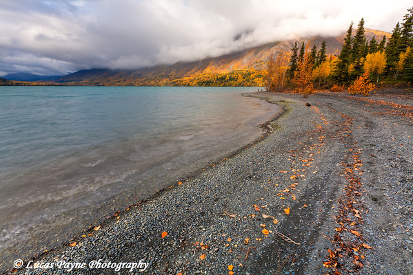 Fall colors and the Kenai Mountains along the shore of Kenai Lake at Quartz Creek day use area.<br /> HDR<br /> September 29, 2011