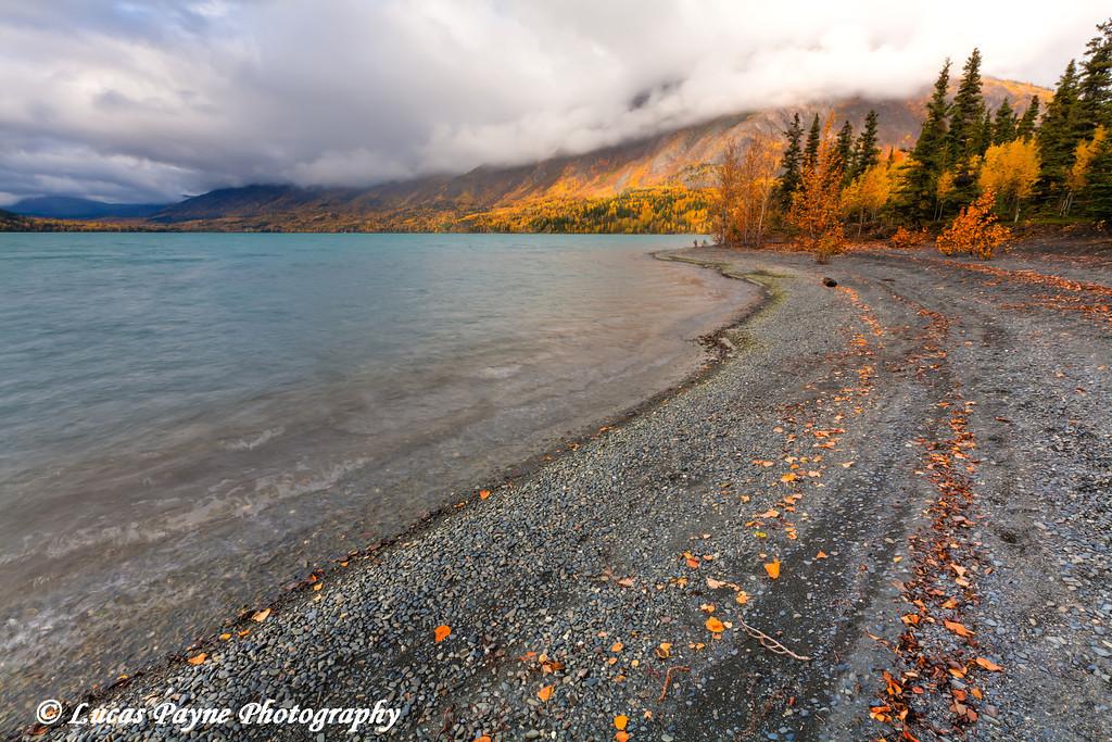Fall colors and the Kenai Mountains along the shore of Kenai Lake at Quartz Creek day use area.<br /> HDR<br /> September 29, 2011