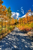 Fall colors along the Petersville Road near Cache Creek<br /> HDR<br /> September 01, 2011