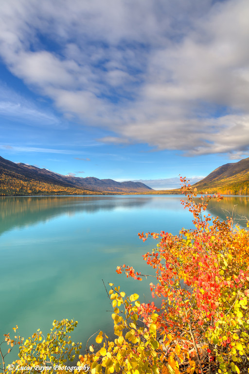 Fall foliage along Eklutna Lake in Chugach State Park, Southcentral Alaska.<br /> <br /> September 29, 2013