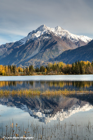 Pioneer Peak and fall foliage reflecting in Reflections Lake along the Glenn Highway in the Matanuska Susitna Valley, Southcentral Alaska.<br /> <br /> September 28, 2013