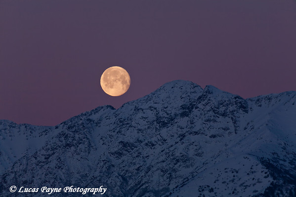 Moon setting over the Chugach Mountains south of Anchorage along Turnagain Arm. <br /> December 22, 2010