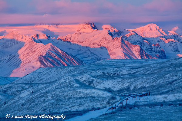 Alpenglow on the Alaska Range with the Alaska Pipeline in the foreground.<br /> HDR<br /> December 27, 2010