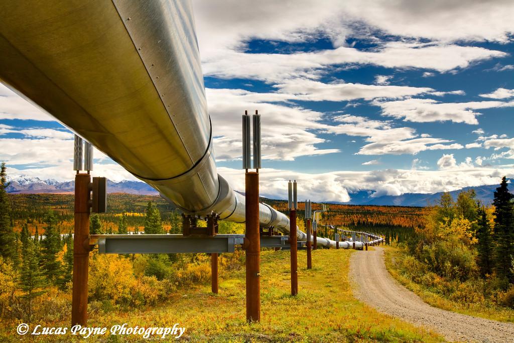 Alaska Pipeline from the Richardson Highway.<br /> September 07, 2010