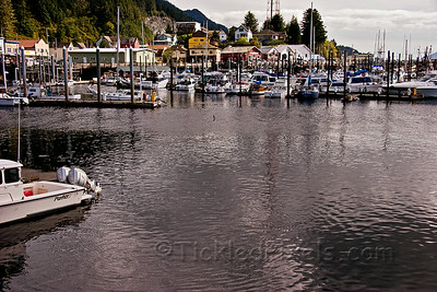 Thomas Basin Boat Harbour