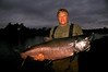 A large king salmon taken from one of the best fishing streams in Alaska.