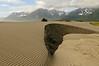 Bremner Sand Dunes on the Copper River.