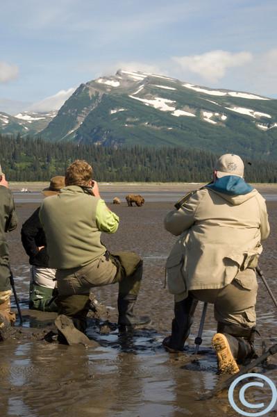 Grizzly Bears -- Coastal, Clamming 1/ 40s, at f/30 || E.Comp:0 || 48mm || WB: AUTO 0. || ISO: 400 || Tone: AUTO || Sharp: AUTO || Camera: NIKON D2Xon: 2005:07:21 11:26:52