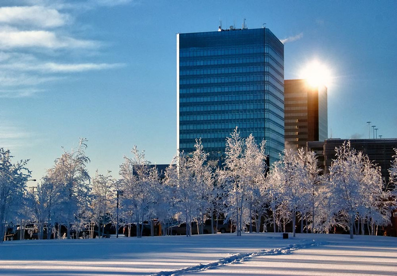 Atwood Building and ConocoPhillips Office with hoarfrost - from Anchorage Museum