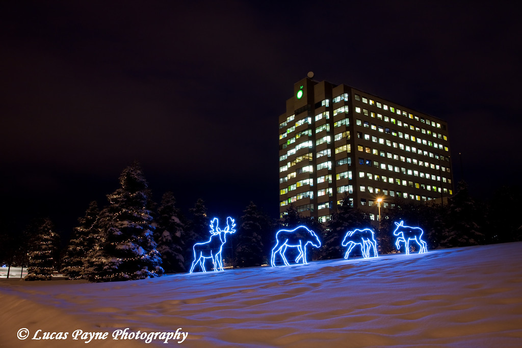 Moose lights and the BP building in Anchorage, Alaska.<br /> December 10, 2008