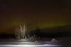 Aurora Borealis @ Murphy Dome - March 4, 2021