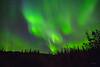 Aurora Borealis off Chena Hot Springs Road