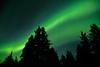 Aurora Borealis at Savage Creek Campgrounds in Denali NP