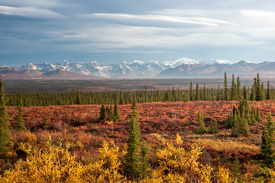 Autumn on the Tundra