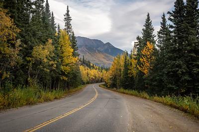 DNP Road