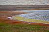 Beautiful colors of the tundra with lagoon in the foreground and Arctic Ocean in the background.