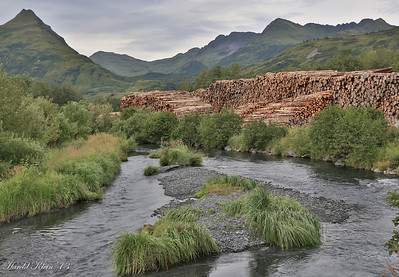 The contrasts of Alaska...wild beautiful streams and clearcut logging...not unlike Oregon...
