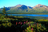 The Neacola Mountains on the western boundary of Lake Clark National Park are the headwaters of the Chilikadrotna River.