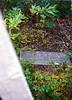 FM-1999-119a graveyard at Denali townsite