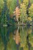 Reflection, McCarthy Road, Wrangell - St. Elias National Park, Alaska