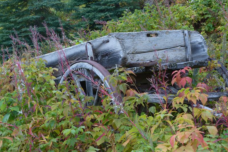 Abandon Wagon, Kennicott Mine, Wrangell St. Elias National Park, Alaska