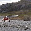 The Heliocouriers landed us on a gravel bar a few miles south of Drain Creek, a tributary to the Kongakut.