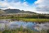 Alaska Pipeline next to pond on Dalton Hwy