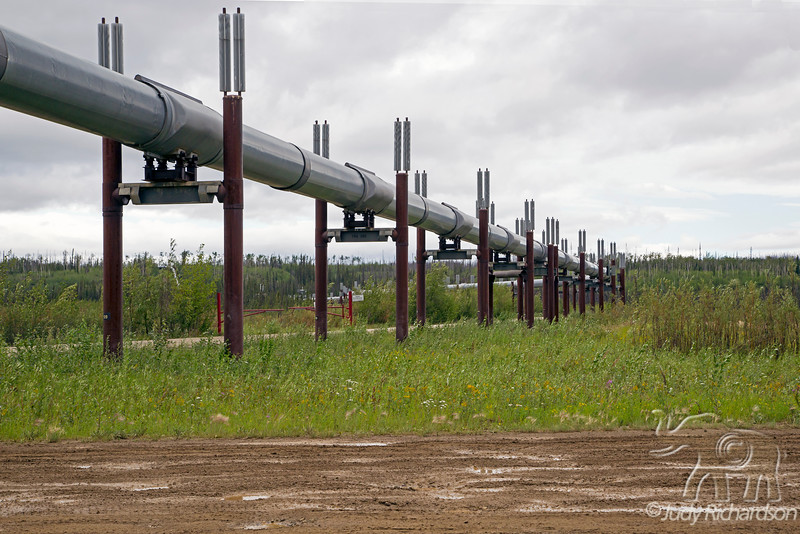 Alaska Pipeline at Yukon, Alaska