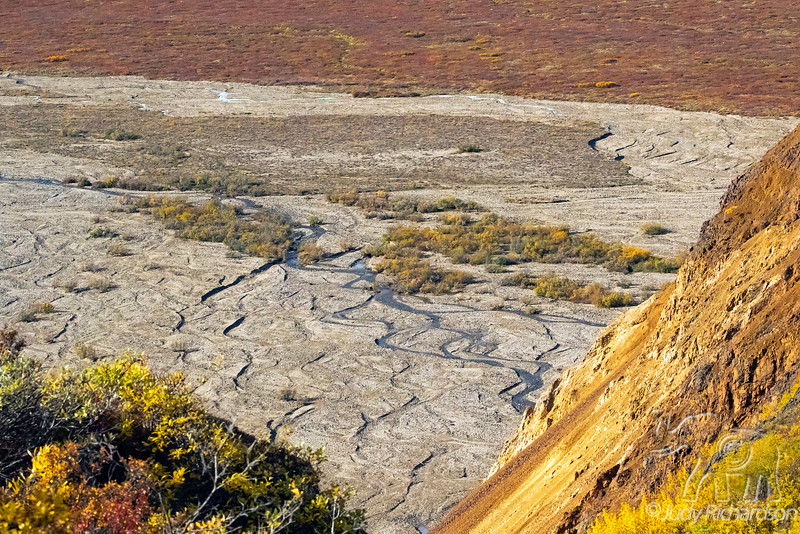 Valley of Denali National Park from Polychrome View Point