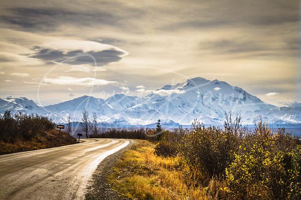 Denali National Park & Preserve 2016 Road Lottery, 9-19-2016