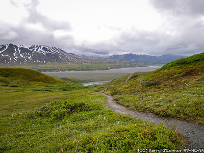 Eielson Center Tundra Loop Trail