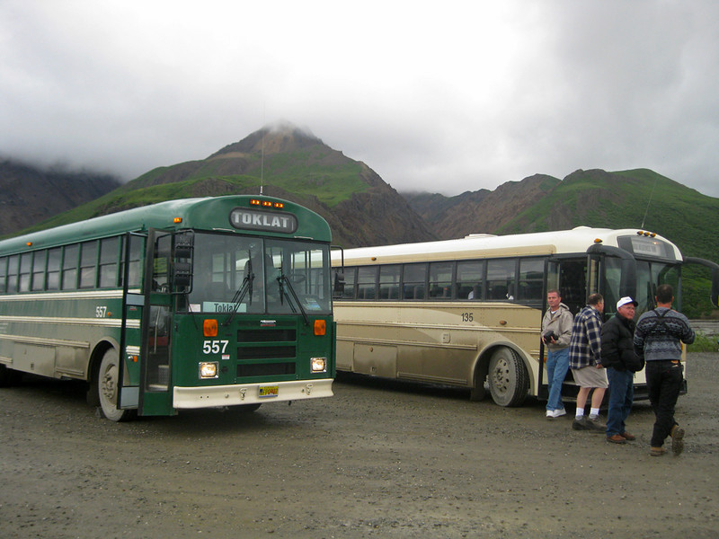 These are the buses that run through the park.  We were riding the Toklat bus at this time.  It began raining heavily and there were mudslides and our driver warned of the possibility of us going over the mountainside at Polychrome Pass(750 ft. drop).