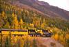 Alaska Railroad on the track above the Nenana River in Denali National Park.