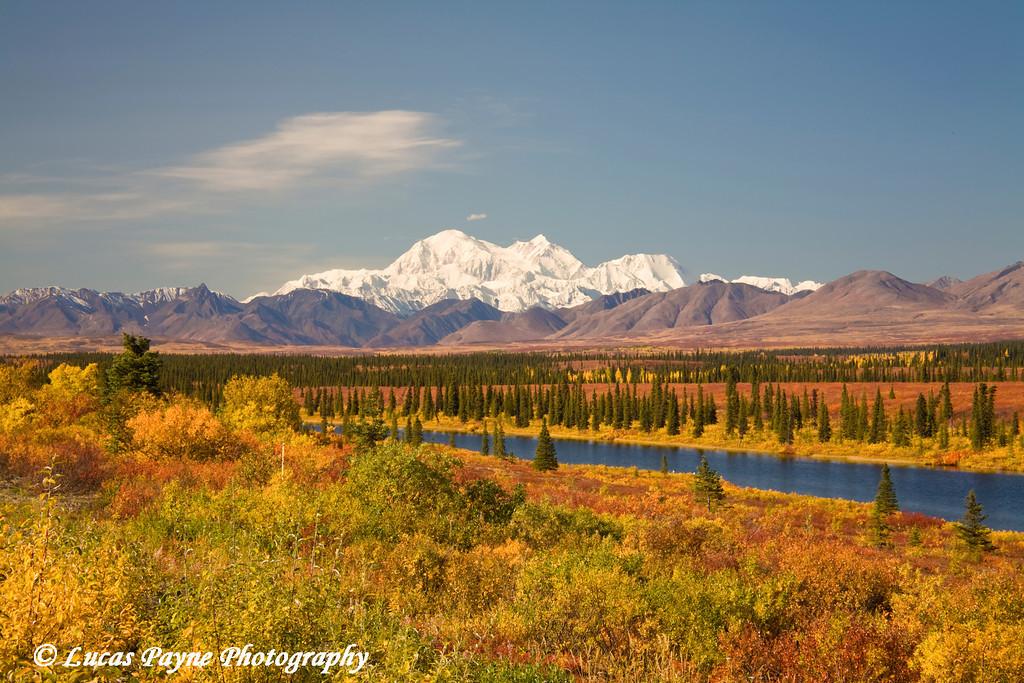 Denali (Mt. Mckinley) fall colors.<br /> September 05, 2009