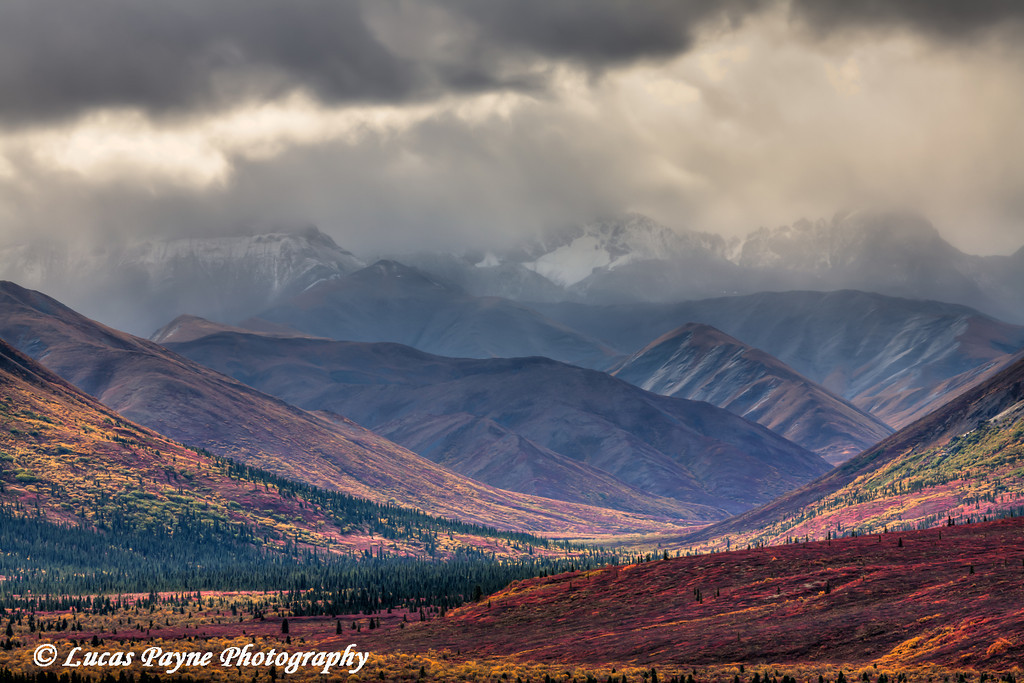Stormy clouds over the Alaska Range and colorful Autumn Tundra in Denali National Park<br /> HDR<br /> September 04, 2011