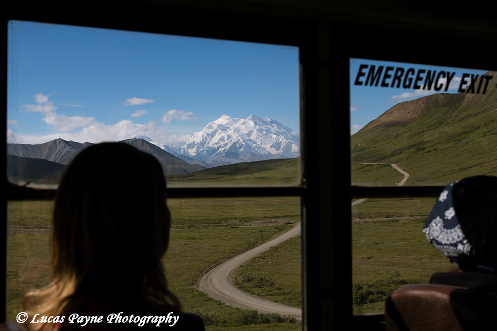 Silhoette of a female tourist enjoying the view of Denali (Mt. McKinley) from inside a park shuttle bus at Denali National Park and Preserve, Interior Alaska.<br /> <br /> August 02, 2013