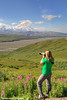 Female photographing the view from the Eielson Visitor Center with Denali (Mt. McKinley) in Denali National Park and Preserve, Interior Alaska.<br /> <br /> August 02, 2013