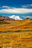 Denali (Mt. McKinley) and Denali National Park.<br /> September 06, 2010
