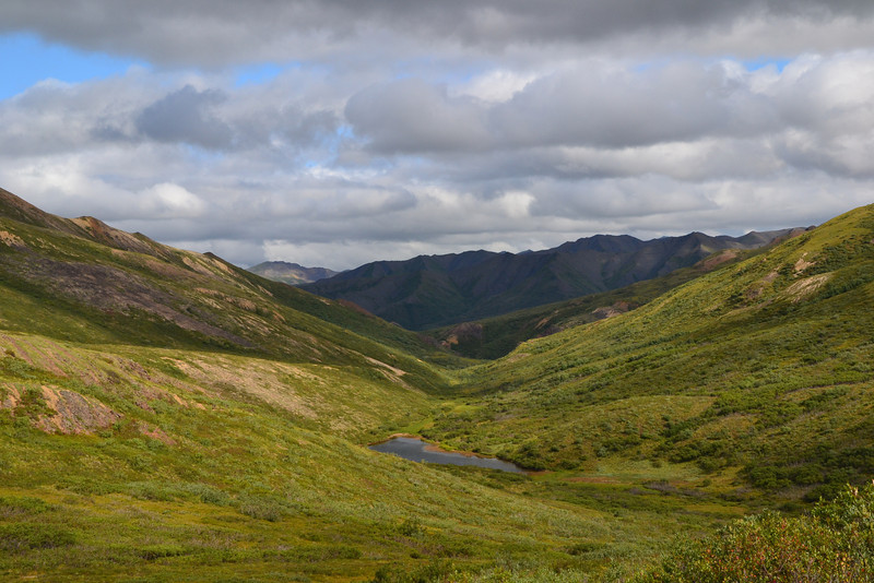 Polychrome Pass, Denali National Park, Alaska