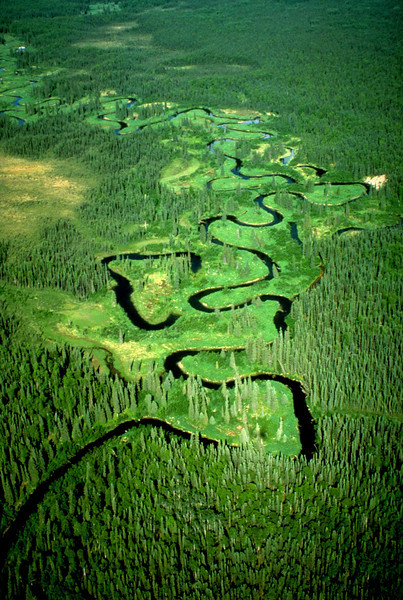 The Little Susitna River upstream from its confluence with the Big Su.