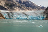PF9A6263_Endicott Arm and Dawes Glacier