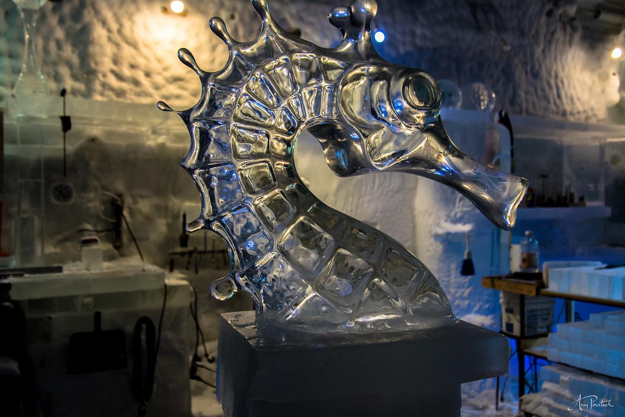 Sea Horse in making