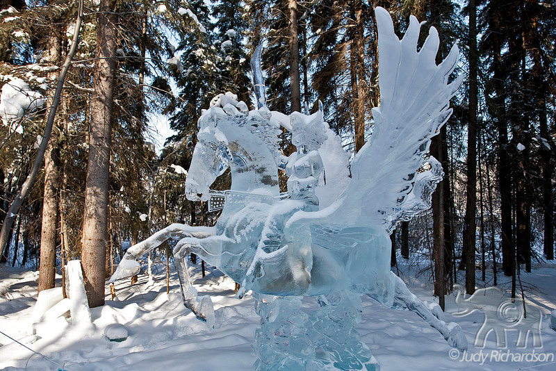 """""""Pegasus in the Sky"""" under heavy snow placed #10 in the single block design."""