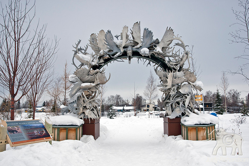 Outside Morris Thompson Cultural & Visitors Center is the impressive antler arch along the Chena River.