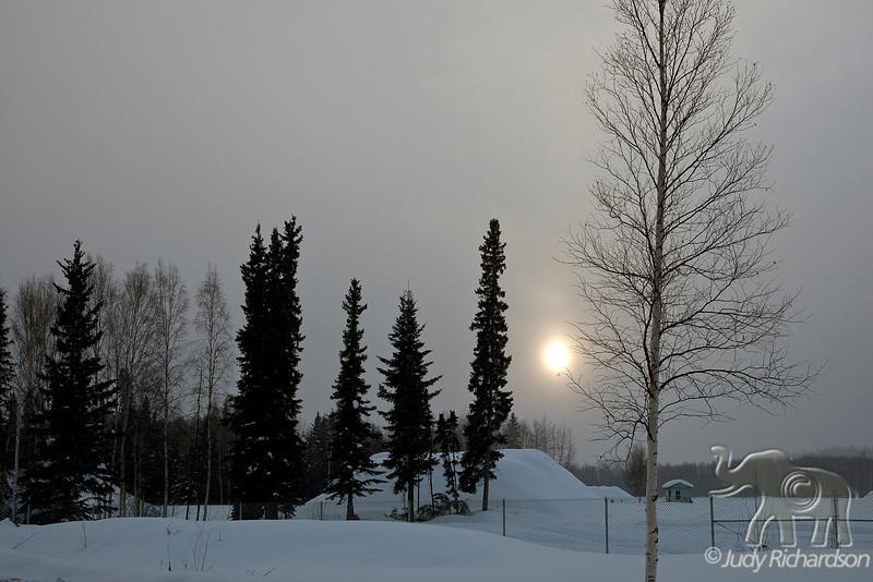 Sun setting through falling snow.